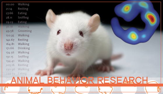 ANIMAL BEHAVIOR RESEARCH